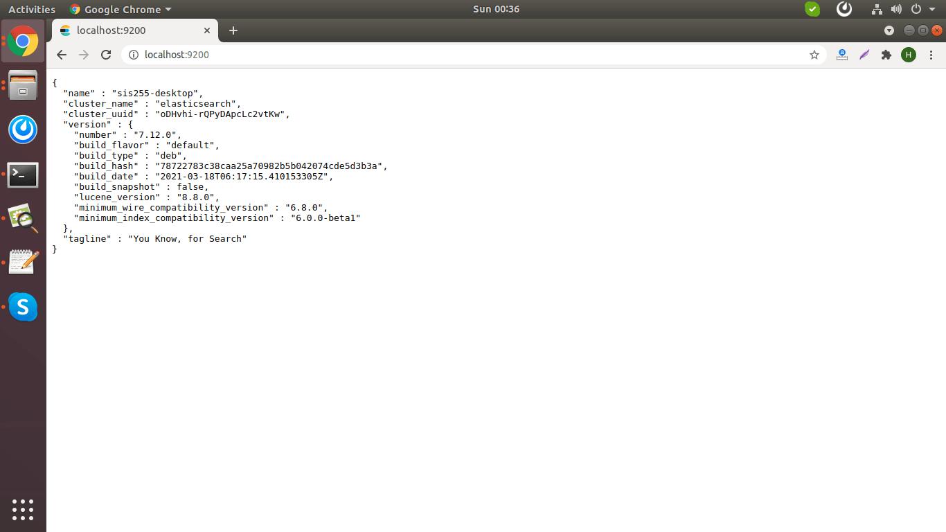 Elasticsearch Running Result
